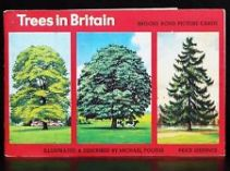 PG Tips - Trees of Britain - we had this one